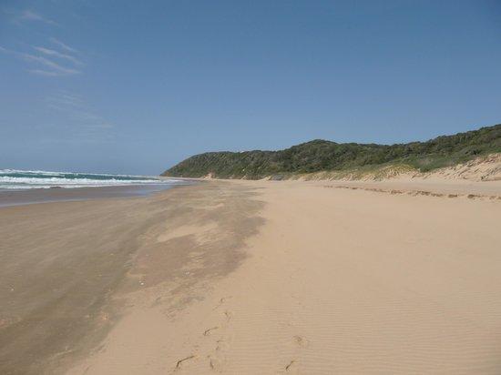 Thonga Beach Lodge: What a beach!!!