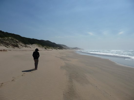 Thonga Beach Lodge: Got a bit worried, thought the beach was a bit crowded; there was one other person on it!