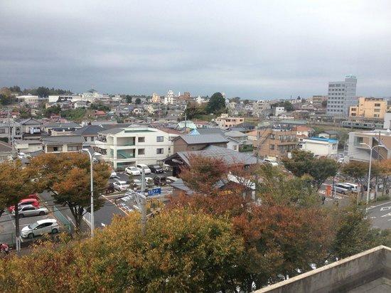 Narita U-city Hotel: Hab. 518
