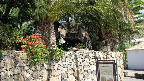 ClubHotel Riu Oliva Beach Resort : Betancuria