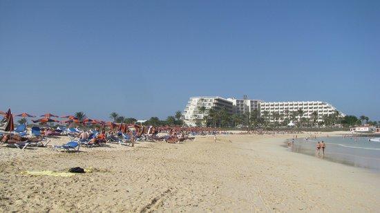 ClubHotel Riu Oliva Beach Resort : Beach and hotel