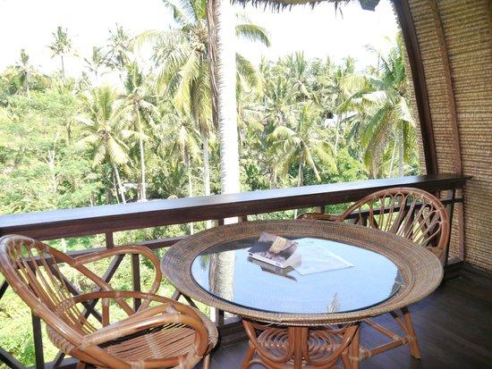 Capung Sakti Villas: ma vue depuis le Lumbung