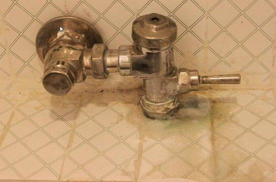 Treebo Kings Kourt: Leaking bathroom fittings