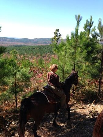 A to Z Guest Ranch: Atop horseback!!!