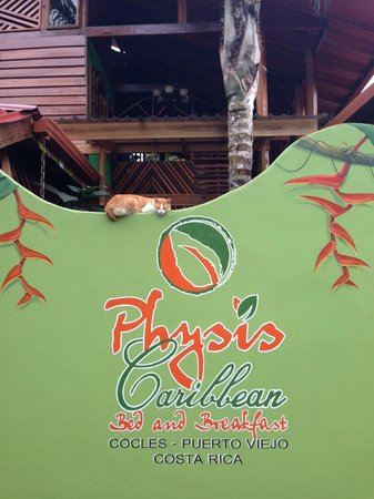 Physis Caribbean Bed & Breakfast: Security