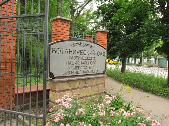 Salgirka City Park: Центральный вход.