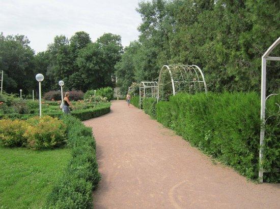 Salgirka City Park: Аллеи парка.