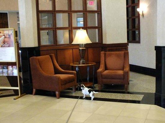 Drury Inn & Suites Greenville: Main Lobby