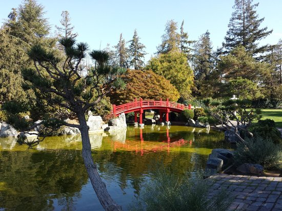 Japanese Friendship Garden: Scenic bridge