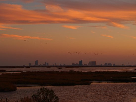 Edwin B. Forsythe National Wildlife Refuge: View of Atlantic City under sunsetting sky