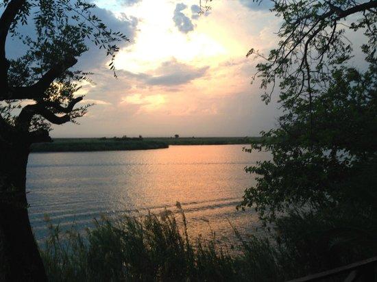 Chobe Marina Lodge : Chobe river