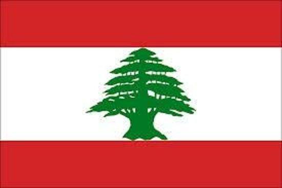 Restaurant Le Libanais : le drapeau