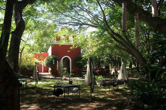 Hacienda Santa Cruz: Jardin