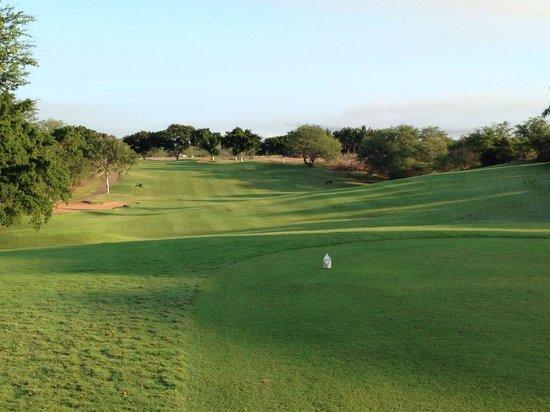 Maui Nui Golf Club: 二番ホール