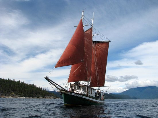 Cortes Island, แคนาดา: Full sail into Desolation Sound