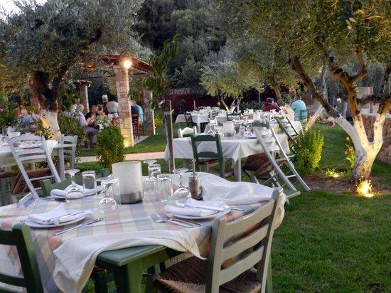 Hotel Europa Olympia : ristorante esterno tra il verde