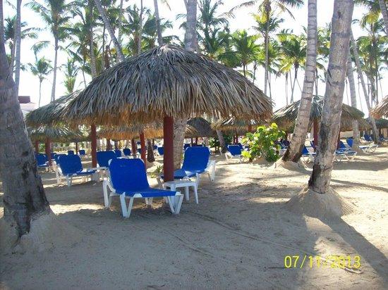 Grand Bahia Principe La Romana: Nice Beach