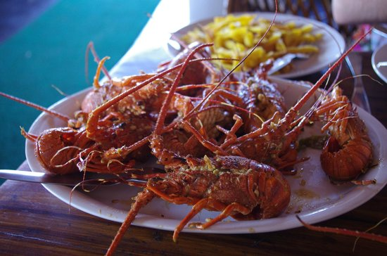 Palm Tree Heritage: langoustes