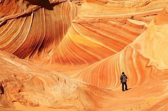 The Wave at Coyote Buttes: Me&The Wave