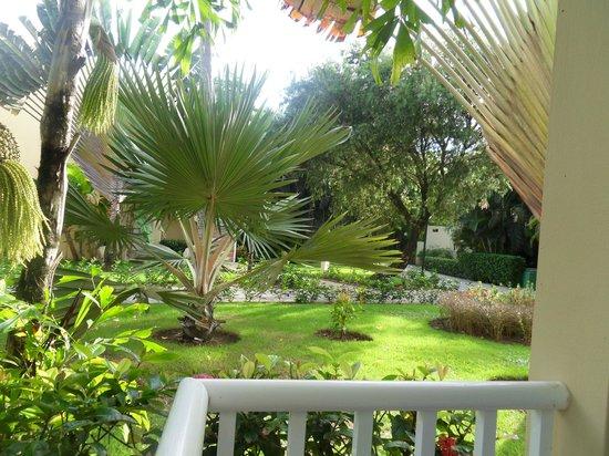 Grand Bahia Principe El Portillo: Grounds