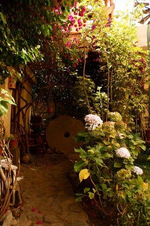 KB Tambo Tours: Courtyard
