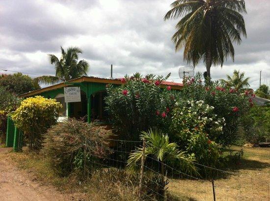 Caribbean Taste Restaurant: Vue d'ensemble du restaurant