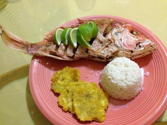 Don Esteban Restaurant: delicious!