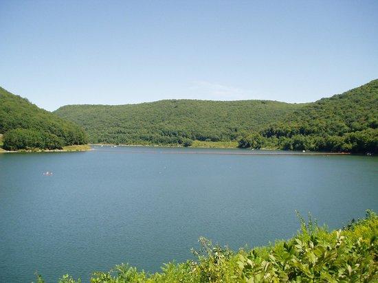 Kinzua Dam: Nice view