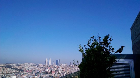 Rixos Pera Istanbul : Breakfast from the top of the hotel