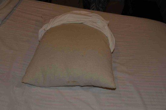 L'Auberge du Cheval Blanc : oreiller couleur pourriture de sueur
