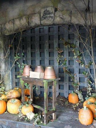 The London Dungeon : Hallowen!!