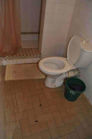 une odeur pouvantable photo de l 39 auberge du cheval blanc antananarivo tripadvisor. Black Bedroom Furniture Sets. Home Design Ideas