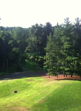 Crowne Plaza  Resort Asheville : View from room of walking trails & golf course