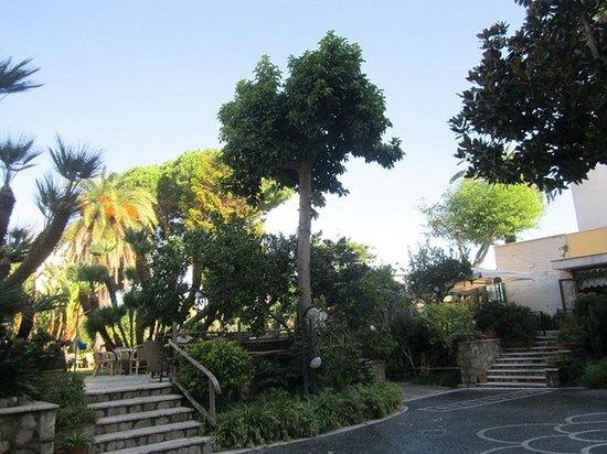 Hotel Eden : Grounds