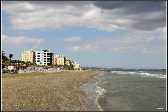 Flamingo Beach Hotel: пляж Макензи