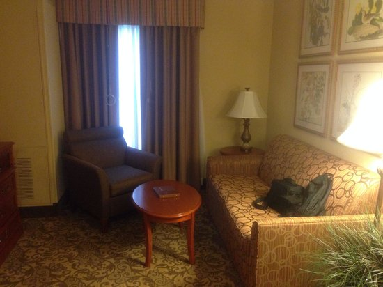 Homewood Suites by Hilton Asheville- Tunnel Road : Living area