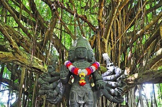 lihue hindu single men Agustin sumuroy was killed by his own men battle  bce dumuzid of uruk captured enmebaragesi of kish single-handed c 2500 bce  battle of lihue.