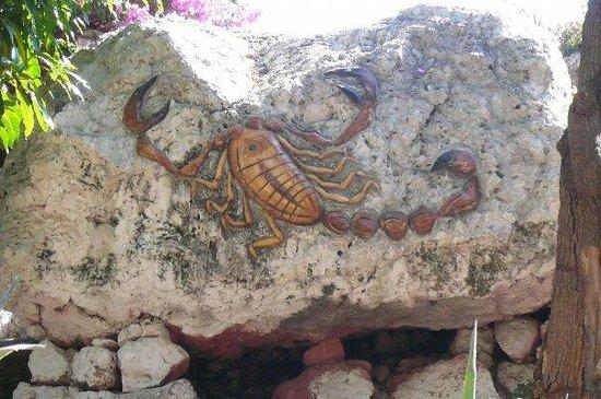 Isla de los Alacranes: Carving
