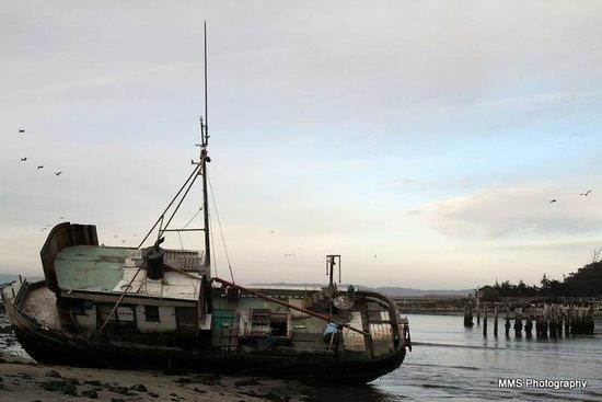 Moss Landing State Beach: Shipwrecked boat