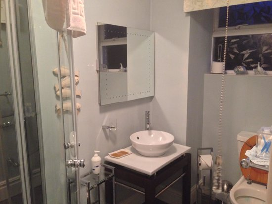 Bryn Aethwy B & B: Bathroom