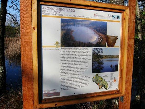 Lagoni di Mercurago: pannello (uno dei tanti del parco)