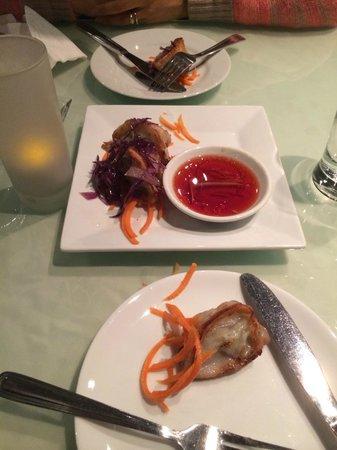 Vegetarian Haven: Seared Dumplings