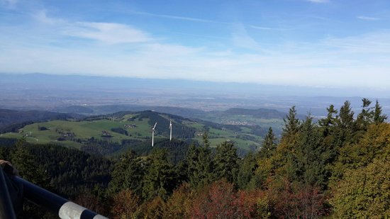 Schauinslandbahn: View from up