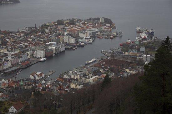 Scandic Byparken: Bergen visto da Fløien