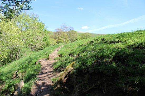Landscape - Picture of Riding House Farm Cottages, Castleton - Tripadvisor
