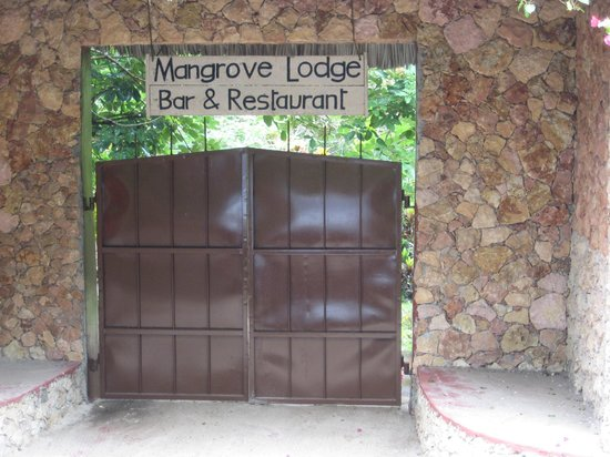 Mangrove Lodge: ingresso
