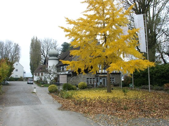 See & Park Hotel Feldbach: Hotelansicht