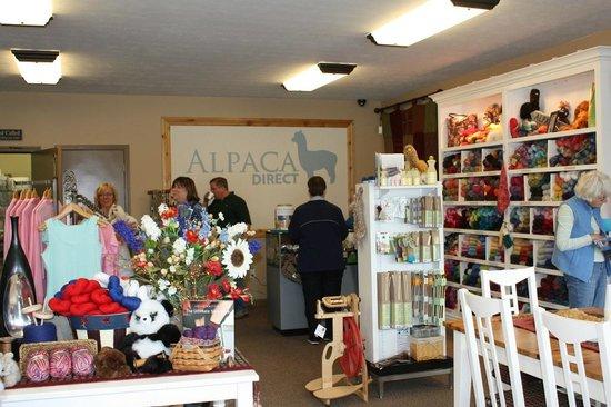 Alpaca Direct: Huge selection of Yarns and Warm alpaca socks