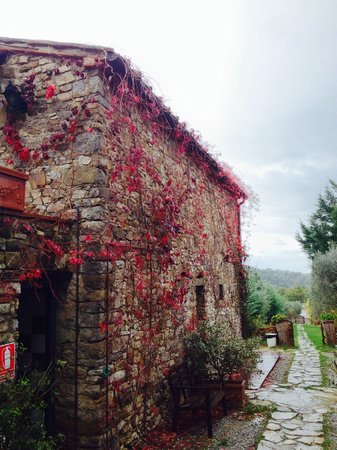 Borgo Casa al Vento: I colori dell'autunno