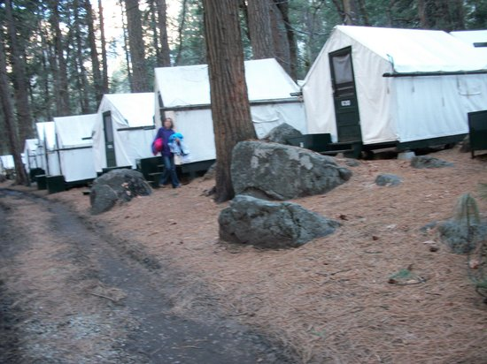 Curry Village: Camino a la cabaña 630, 6:30 de la mañana